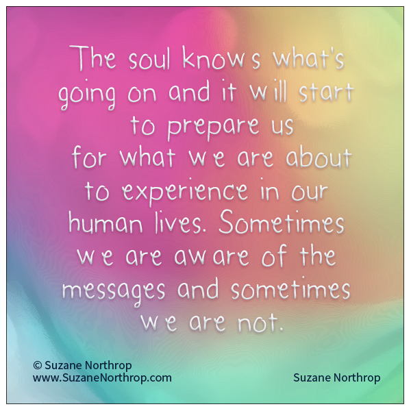 Wise Words from Suzane Northrop